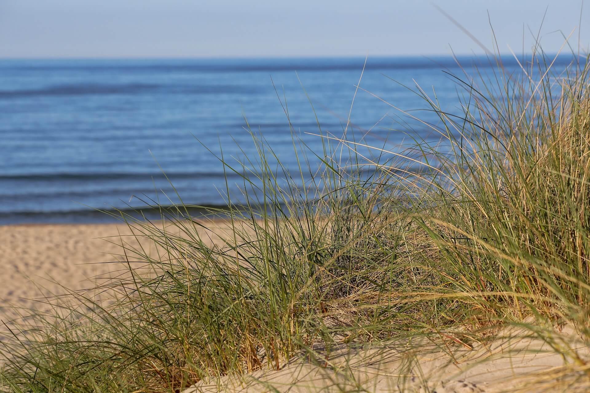 Ostsee Strand